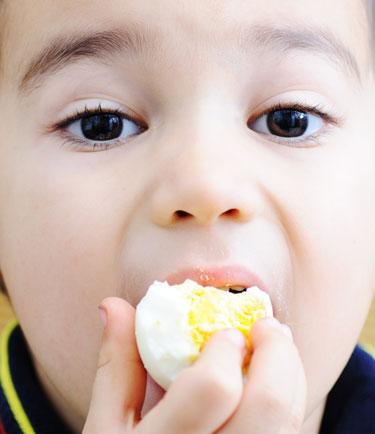 Resultado de imagen para comiendo huevos