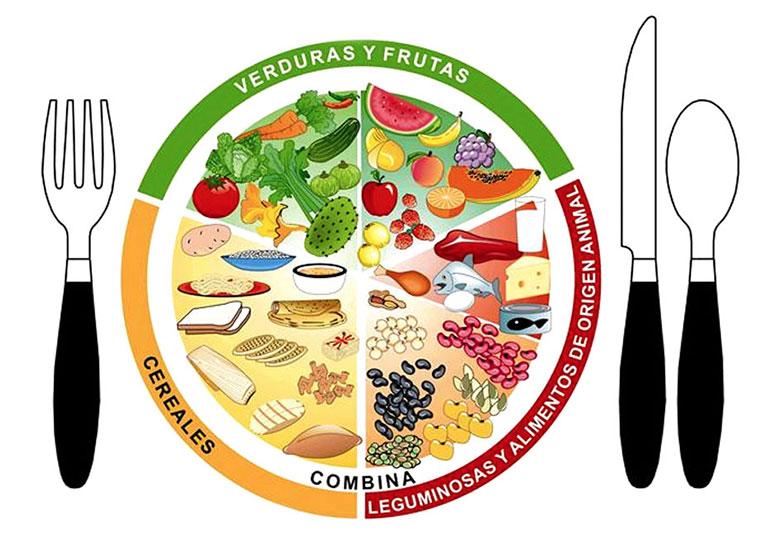 Los alimentos nos alimentamos y nos nutrimos for La cocina de los alimentos pdf